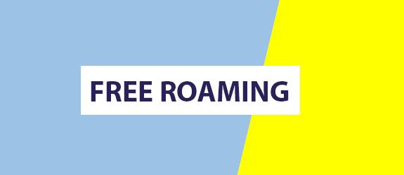 blog-roaming